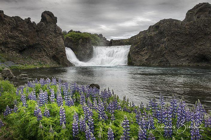 Hjalparfoss is een kleine waterval die in twee armen tussen de basaltzuilen door 20 meter naar beneden valt. Hjalparfoss betekend 'hulpwaterval'. Vroeger trokken de reizigers over de Sprengisandurroute dwars door het binnenland naar de andere kant van IJsland. Dat was een zware en risicovolle reis. Wanneer men vanuit het noorden bij deze waterval aankwam hadden ze weer voor het eerst vers water en voer voor de paarden. De waterval ligt in de Fossá rivier die in de machtige gletsjerrivier de Pjorsa uitvloeit. De weg erheen is onverhard met met een 2WD goed te berijden. Er is een parkeerplaats met picknicktafels, van hieruit heb je een mooi uitzicht over de waterval.